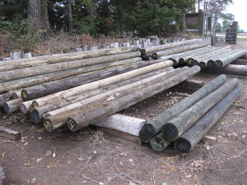 Long Poles | Discount Post & Pole